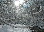 011416_snow02