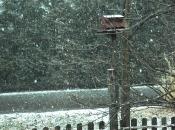 032415_snowfall01.jpg