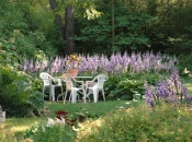071214_garden.jpg
