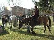 112416_Horses@Antioch03