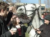 112416_Horses@Antioch05