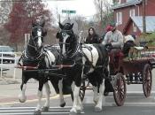 120116_horses01