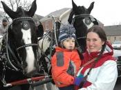 120116_horses02