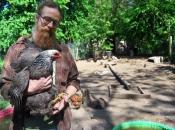 Chicken Warden