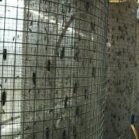 soldierflies