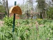 antiochfarm01