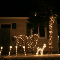 christmaslights_09