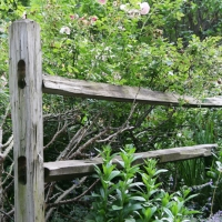 fence014