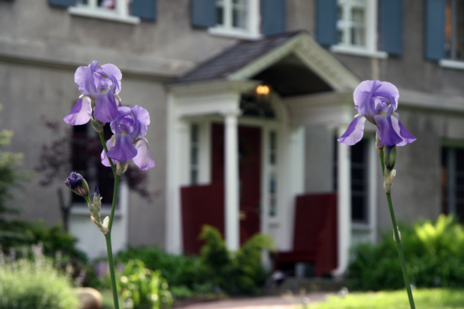 Irises in front of the Arthur Morgan House. Photos by Suzanne Ehalt