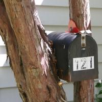 mailbox_pt2_02