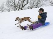 sledding_11