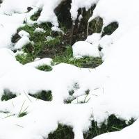 winterwalk_15