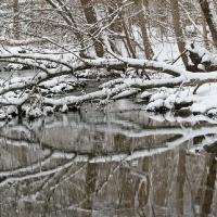 winterwalk_17