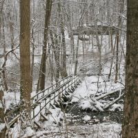 winterwalk_27