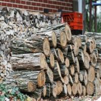 woodstockpile_04
