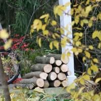 woodstockpile_06