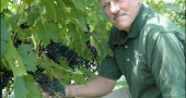 In June Jim Brandeberry and his family opened Brandeberry Winery on their 10-acre farm on W. Jackson Road in Enon. Four miles from Yellow Springs, the winery is the closest producer of chardonnays, cabernets and sweeter berry wines within 40 miles of town.
