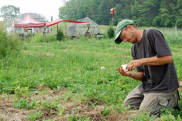 """Doug Christen plants summer squash seeds at Smaller Footprint Farm, a certified """"naturally-grown"""" farm that supplies vegetables for 30 local families. Farm shares, which cost $425 for 20 weeks of fresh produce, are available for the 2010 season. (Photo by Aaron Zaremsky)"""