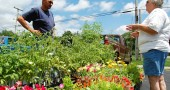 Ronald Funderburg advises a costumer while overlooking his army of plants (photo by Aaron Zaremsky)