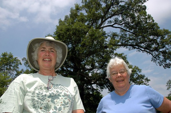 Macy Reynolds, left, and Kathy Beverly of the Tree Committee measured the large oaks, hickories and locust trees of Mills Lawn on a recent summer day. (Photo by Megan Bachman)