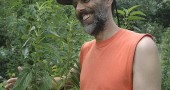 Permaculturist Dave Jacke hugged a stinging nettle plant at a farm homestead on Hustead Road, where he will teach a seven-day workshop on creating edible forest gardens next week. Jacke will also give a free public lectures at the Glen Helen building on homescale food production and enhancing soil fertility on Aug. 9 and 11.