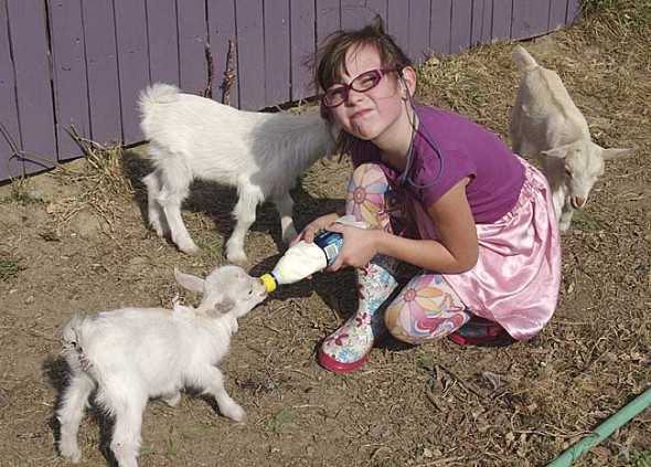 Sophie Entler and some of her hoofed friends at the Purple Moon Farm, which her parents, James Entler and Jessica Wyant, run on Meredith Road.