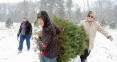 Michael Finster helps Dr. David Hyde and Mary Hyde haul their freshly cut tree (photo by Aaron Zaremsky)