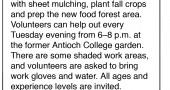 Antioch Gardens Info