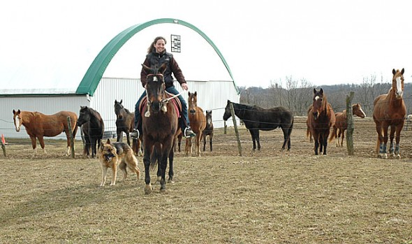 Laura Funderburg uses the natural horsemanship technique when she trains and teaches at her family's farm on the southern edge of the village. (Photo by Lauren Heaton)