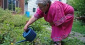 Laurie Dreamspinner used the water from one of the four rain barrels connected to her downspouts to water the marigolds, peas and herbs she grows in her front and side yards. The stormwater reclamation saves her money and the already wet area unneeded runoff. (Photo by Lauren Heaton)