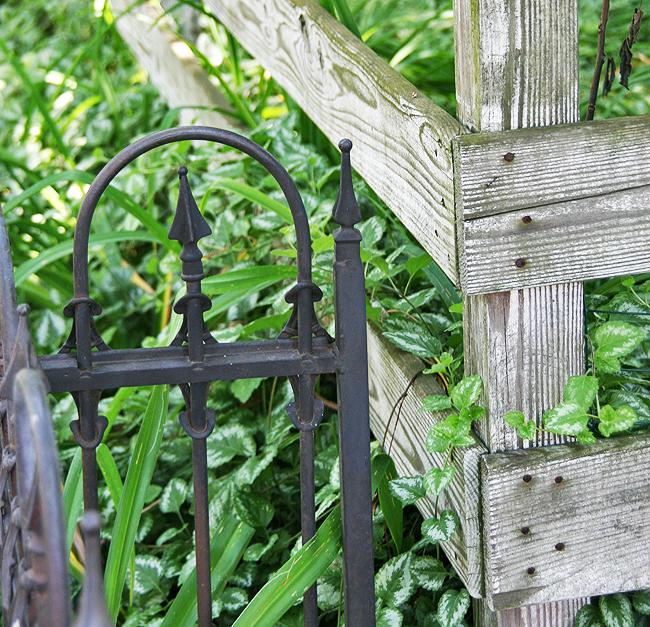 Where yards meet on Xenia Ave. (photos by Suzanne Ehalt)