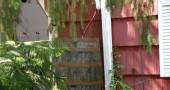 A camouflaged rain barrel on Cliff Street. (photos by Suzanne Ehalt)