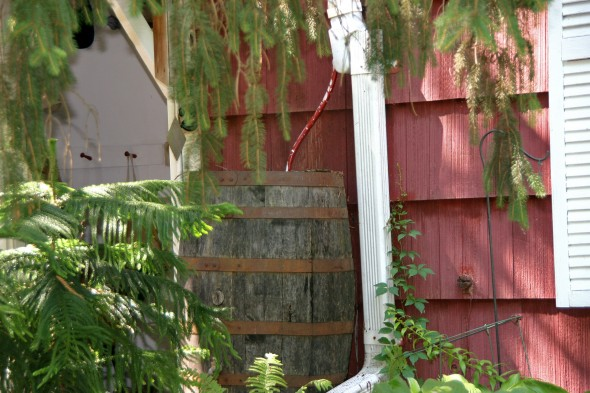 A camouflaged rain barrel on Cliff Street. (photos by Suzanne Ehalt)