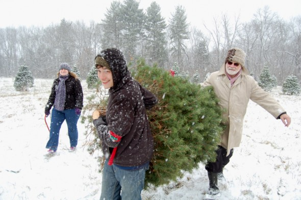 Michael Finster helps Mary Hyde and Dr. David Hyde with their Christmas Tree