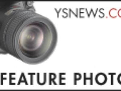 Purchase <em>News</em> photographs
