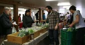Flying Mouse Farms sells a mix of winter greens.