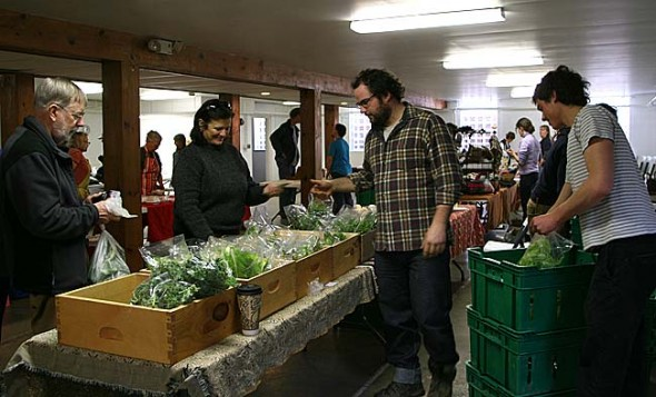 Patchwork Gardens selling a mix of winter greens.