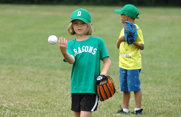 baseballrec14