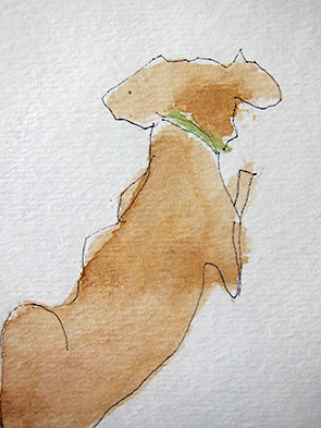 dog with green collar by Kim Korkan