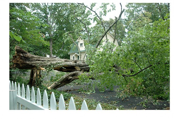 An example of the debris storms such as Hurricane Ike left around the village in 2008.
