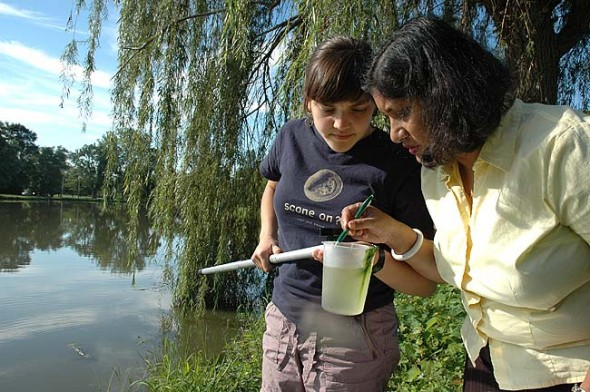 Assistant professor of biomedical science Savitha Krishna, right, and Antioch student Diana Harvey sampled the water at Ellis Pond this week in search of the larvae and pupae of mosquitoes that may carry the West Nile Virus. The Antioch biology class is working with the Green Environmental Coalition and Greene County Combined Health District to monitor and control the spread of mosquitoes in the village to prevent the potentially-dangerous illness. (Photo by Megan Bachman)