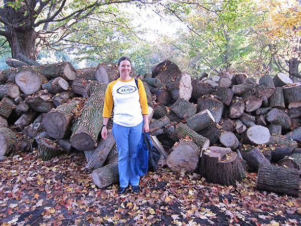 big woodpile