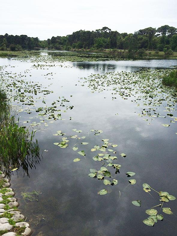 Walsingham Park