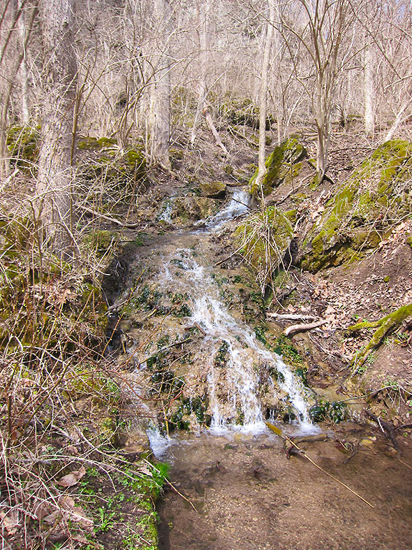 feeding creek
