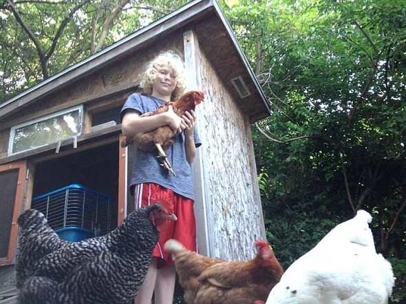 Will Clagget is shown here with a handful of hens at his family's Lmestone Street chicken coop, which is included in the Tour de Coops tour of backyard chickens in the Village. (Photos by Matt Minde)