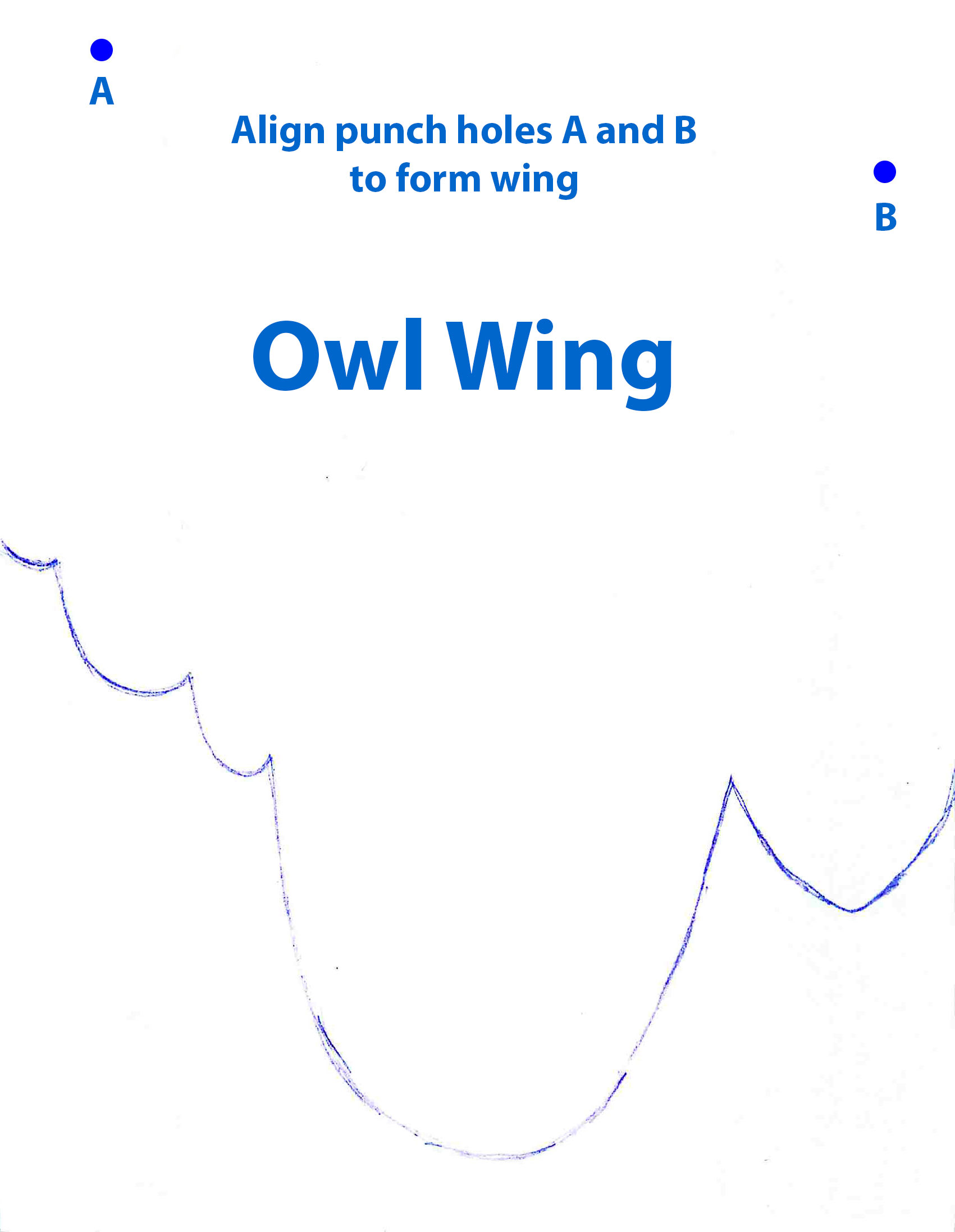 owl wing pattern