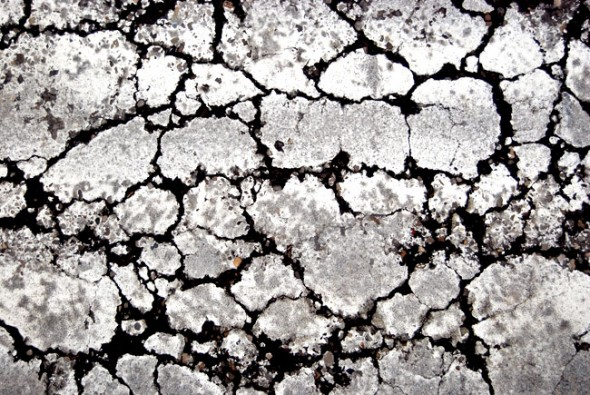 A cracked sidewalk produces interesting textures.