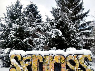 Aaron's Lens - Snow