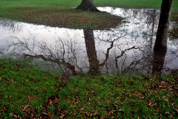 A stormy reflection (photo by Aaron Zaremsky)