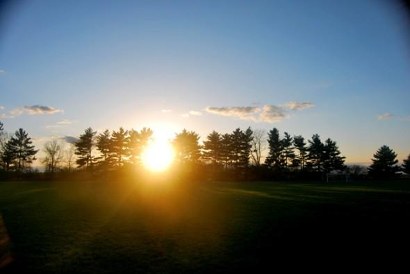 A sunset through an evergreen filter (photo by Aaron Zaremsky)